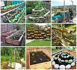 Gardening ideas | Garden | Pinterest