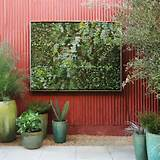 How to Choose the Best Vertical Garden Expert