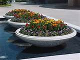 fiberglass pots and planters | ideas for your garden