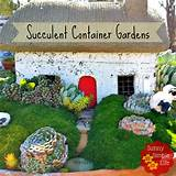 Sunny Simple Life: Succulent Container Gardens, Low Water Garden Ideas
