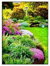 landscaping and garden center gardens ideas garden ideas front yards