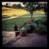 peaceful landscaping primitive ideas pinterest