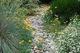 some ways to soften the edges of the dry creek bed need a large flat
