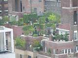 Urban Gardening - Photos of Urban Gardens, from Rooftops to Container ...