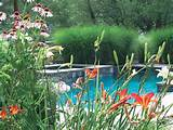 ridgefield ct pool property care