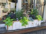 Window box planter | Garden Ideas | Pinterest