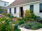 English Cottage Garden Ideas | OnHomes.org