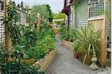 Driveway Turned Edible Garden | Bloomtown by Darcy Daniels