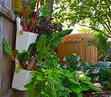 garden ideas container garden ideas with plastic883 x 775 236 kb jpeg ...