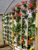 Here's a really unique method of gardening VERTICALLY that is easy ...