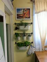 unique indoor garden ideas modern magazin