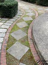 garden path simple gardening ideas pinterest