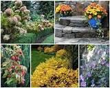 serenity in the garden ideas for a fall garden garden design
