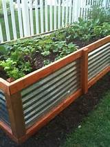 Raised Garden Beds ‹ Live in Puget Sound