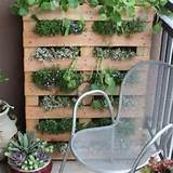 Small space gardens http://www.apartmenttherapy.com/gardening-without ...