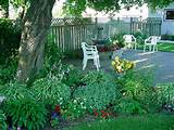 shade gardening is one of the easier gardens to grow and care for