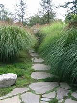 grass path home design ideas pictures remodel and decor