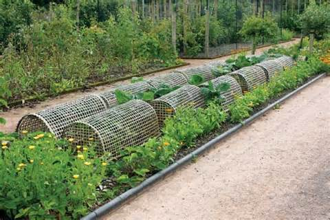 how to make cheap garden beds organic gardening mother earth news