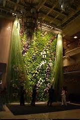 Vertical garden, Patrick Blanc, Mur Végetál, hotels, design ...