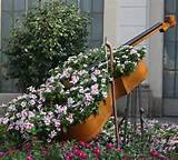 Unique cello flower... Gardens Ideas, Beautiful Flower, Music, Flower ...