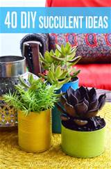 40 diy succulent ideas sew woodsy sew woodsy