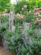 country cottage garden diy garden decorations and ideas pinterest
