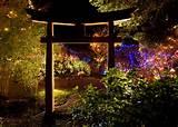japanese garden christmas lights design ideas colourful lighting