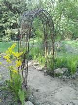 grapevine trellis garden fun pinterest