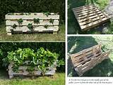 diy strawberry pallet planter home design garden architecture