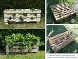 DIY Strawberry Pallet Planter | Home Design, Garden & Architecture ...