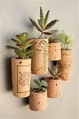 Cute DIY Mini-Garden Designs | DIY projects | Pinterest