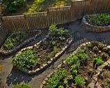 Easy Garden Ideas Vegetables | Native Garden Design