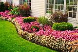 perennial flower bed designs