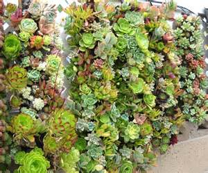 ... vertical container gardening ideas vertical container gardening ideas