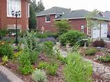 ... This view is from the driveway with the butterfly garden on the left