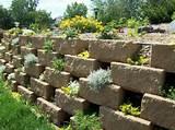 d co jardin ext rieur 20 exemples pour les mains vertes