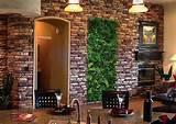 decoracion interior con plantas | Guia de decoracion