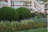 Category: Garden Landscape Design Tips and Ideas - Landscape Designer ...