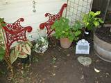 Pet Memorial Garden, This garden came of burying my little kitty of 18 ...