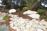 dry river bed native garden architecture design