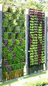 lovely vertical garden green living ideas