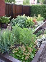 garden idea pictures small front garden design ideas garden idea