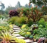 Garden Paths and Landscape Steps - Contemporary - Landscape - san ...