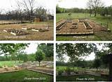 raised bed garden ideas garden pinterest
