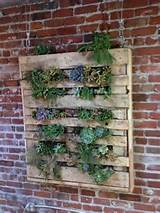 innovative diy pallet vertical garden ideas easy diy and crafts