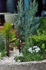 container fairy gardens gardens pinterest