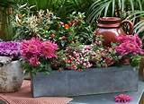 Springy Decorative Ideas to Revive Your Garden Decoration - Stylish ...