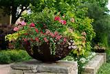 unique landscaping ideas for potted planters