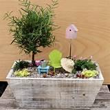 Garden | Miniature Garden Shoppe
