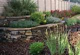 backyard landscaping photos